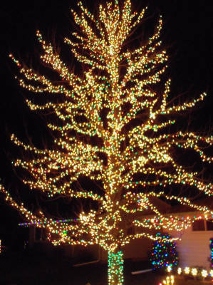 Holiday Lighting by Landscape Medics of Green Bay